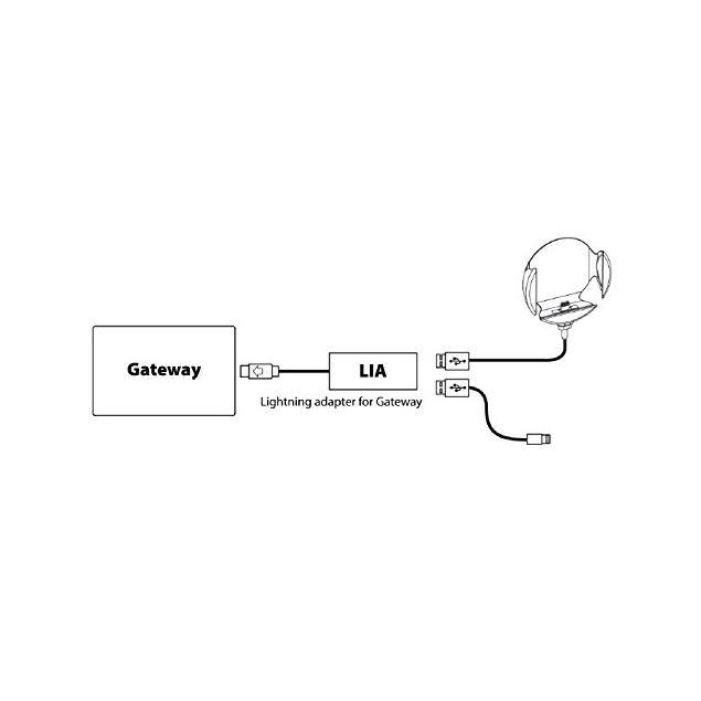 Dension LIA1GW0 - Lightning USB Adapter for Dension Gateway