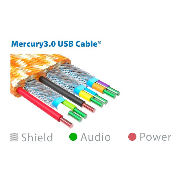 iFi-Audio Mercury3.0 - USB 2.0 cable (USB A to USB B / USB 2.0 / 1.0 m / grey/orange)