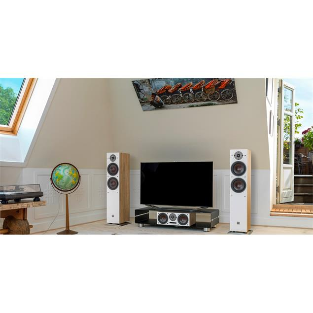 DALI Oberon 7 - 2-Way bass reflex floorstanding loudspeakers (30-180 Watts / light oak / 1 pair)
